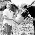 Утомлённую лошадку напоить