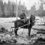 Зимняя лесозаготовка в 1950-е годы.