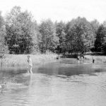 Река Шурговашка. Камешник.
